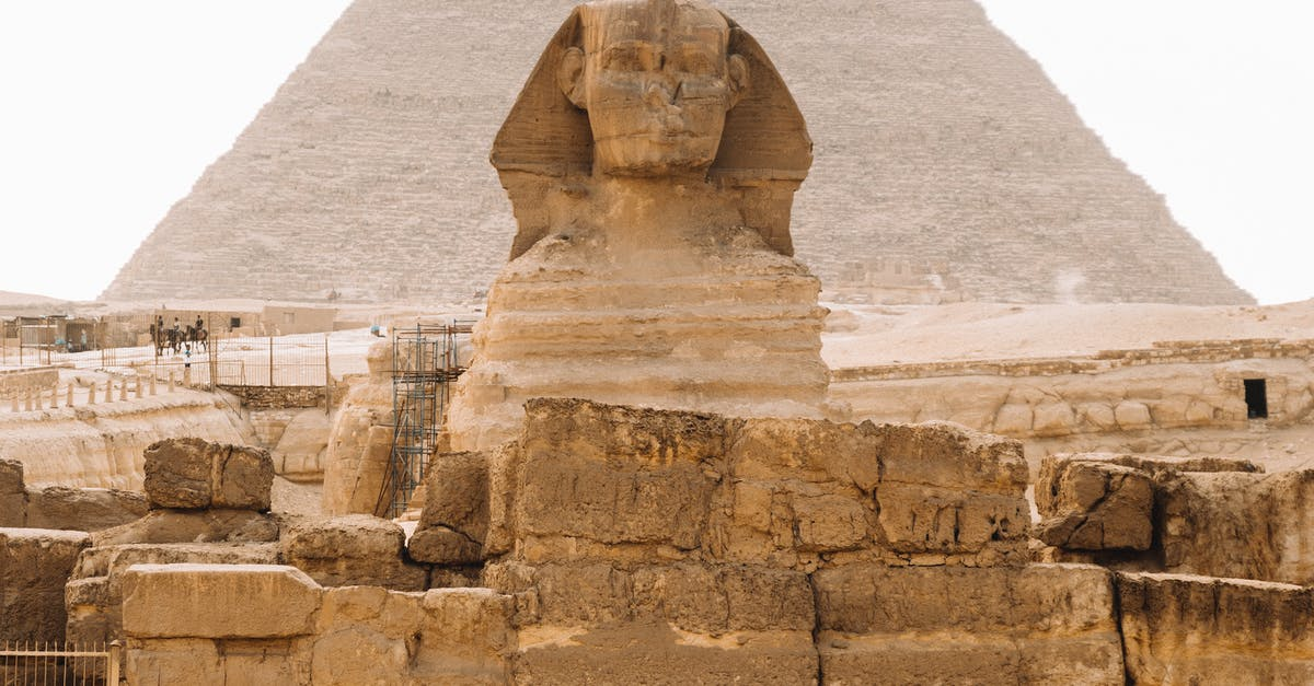 A person standing in front of a large rock with Great Sphinx of Giza in the background